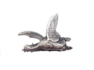 Odznak kačka